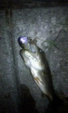 愛媛野池のバスフィッシング釣行記-マッジーで