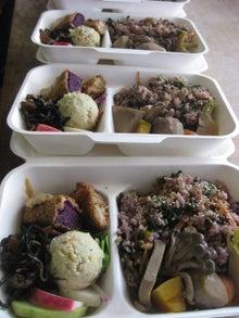 NGO大森林のブログ-へっころ谷のお弁当(サンプル)