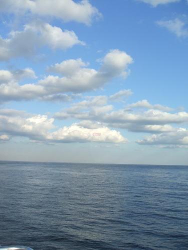 ブレッド&サーカス・ブログAbsolutely Delicious!-海