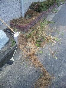 みずほ台(東武東上線)駅東口徒歩1分の自転車預かり高橋駐輪場