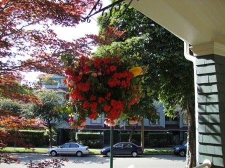 dahliaのブログ-Aug 16'10 ⑧ アイカナダ
