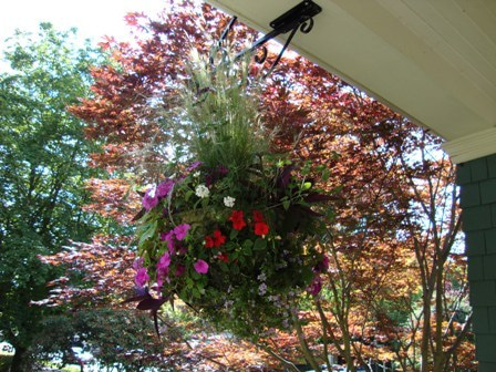 dahliaのブログ-Aug 16'10 ⑦ アイカナダ