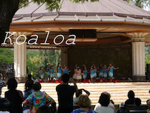Koaloa staff blog