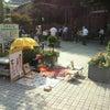 神戸は暑い…の画像