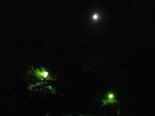 夏の夜の夢~|京都祇園のMana・癒し美し占術師・はんなり。。。