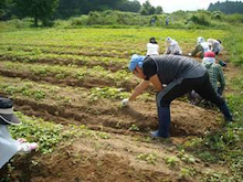 福島県在住ライターが綴る あんなこと こんなこと-農学校100829-2