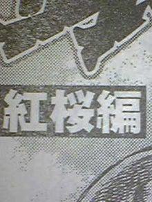 セレソン №9 のブログ-Image002.jpg