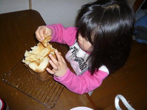 Grumpy Monkey(不機嫌なおさるさん)の観察日記-gm eating bread
