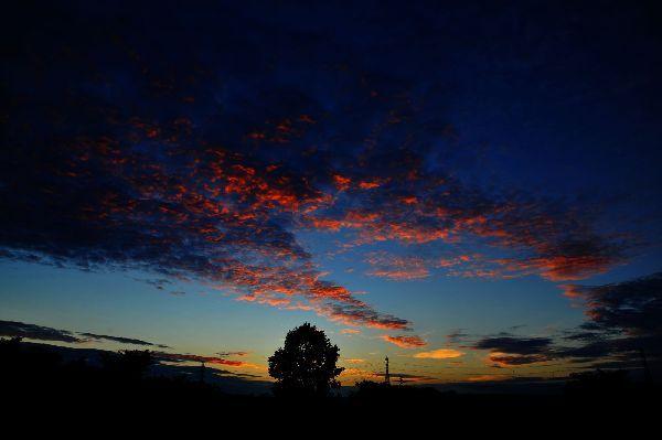 北海道の野生動植物写真-夕焼け