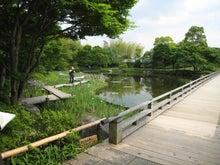 外で遊べるiPhoneAppのブログ-日本庭園