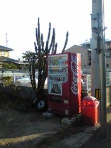 https://stat.ameba.jp/user_images/20100906/20/maichihciam549/04/80/j/t02200293_0240032010734153955.jpg