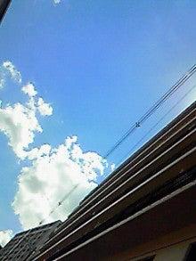 藤井美由紀 JK21オフィシャルブログ「キラキラ乙女心」Powered by Ameba-NEC_0135.jpg