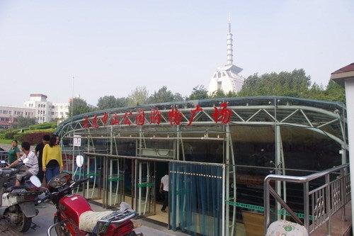 中国大連生活・観光旅行通信**-大連 水族大世界