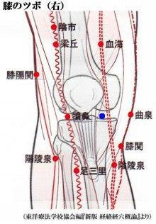 ツボ 膝 関節 痛 膝痛をお灸で緩和するために知っておきたい6つのツボ|ヘルモア