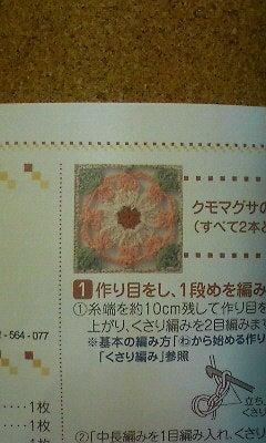 野の花手芸噺-P1000576.jpg