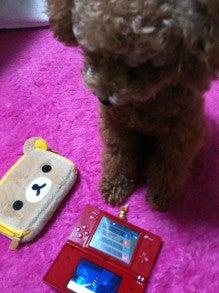 前田希美オフィシャルブログ「まえのんBlog」 Powered by Ameba-__.jpg