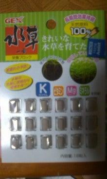 kinoko-upaさんのブログ-100924_2324~01.jpg