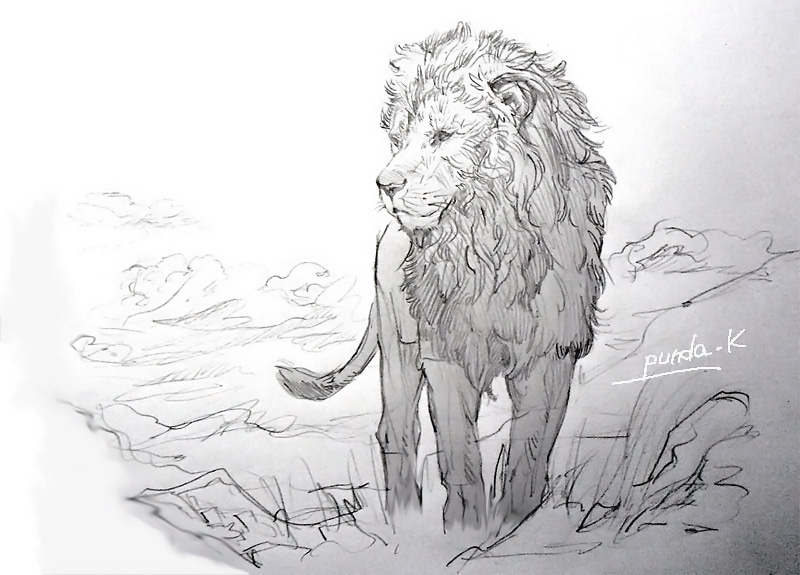 イラスト草原のライオン アフリカゾウチーター 写真cg日記