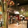 期間限定ハタケヒコ「づんだ餅」/カフェ マメヒコ 渋谷店の画像