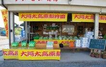 大淀町nanaのブログ-梨