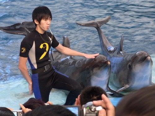 中国大連生活・観光旅行通信**-大連老虎灘海洋公園極地館