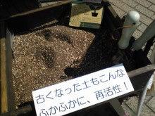 なちゅらいふのeco life-Image250.jpg