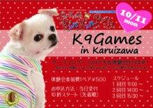 K9ゲーム推進プロジェクトのブログ-2010HGPR