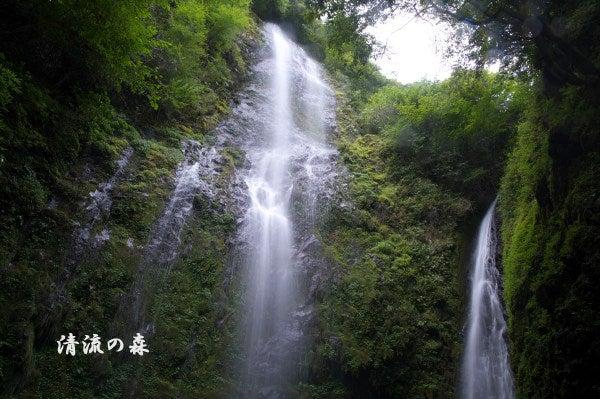乙原の滝   清流の森 ~九州の滝...