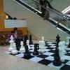 オークランドでチェスをしようの画像