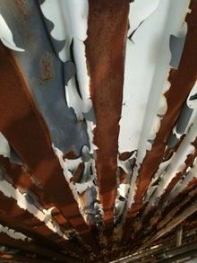 江戸川・市川を中心に屋根・外壁・リフォームの会社を経営する「三代目社長の独り言」 雨漏りブログも好評です。 -IMG_5249.jpg