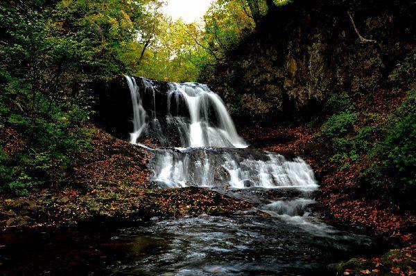 北海道の野生動植物写真-平和の滝