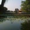 ダムセン公園  Ho Chi Minh City  Vietnamの画像
