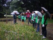 緑化推進事業の活動報告-田んぼを見学