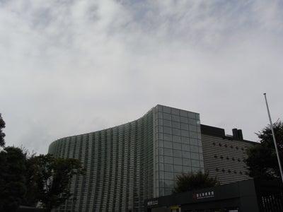 【たんぽぽの惑星】-新国立美術館