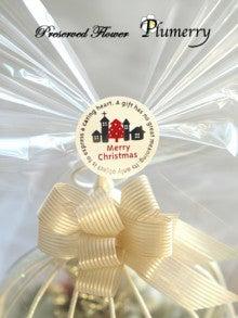 Plumerry(プルメリー)プリザーブドフラワースクール (千葉・浦安校)-ミラーバードケージ クリスマス