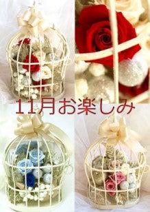 Plumerry(プルメリー)プリザーブドフラワースクール (千葉・浦安校)-クリスマス バードケージ