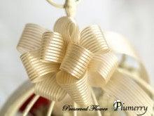 Plumerry(プルメリー)プリザーブドフラワースクール (千葉・浦安校)-クリスマスレッスン プリザーブド