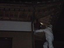 「3H COMPANY」のぶろぐ ~激安スズメバチ駆除~ (スリーエッチカンパニー)-除去