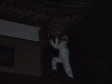 「3H COMPANY」のぶろぐ ~激安スズメバチ駆除~ (スリーエッチカンパニー)-シュー