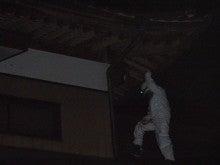 「3H COMPANY」のぶろぐ ~激安スズメバチ駆除~ (スリーエッチカンパニー)-待ち
