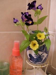 ヒロアミーの日記-お風呂の花1