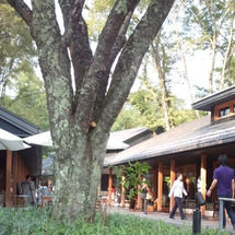軽井沢旅行~2010…