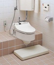 和式便器用のウォシュレット(Washlet for Japanese Toilet ...
