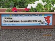 大好きっ流山市!~わくわく奮闘日記~