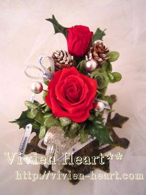 Vivien Heart** ~ヴィヴィアンハート~-レッドスレイ レッド&キウイグリーン