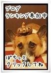 ぶーちゃんのお洒落日記-ランキングバナー