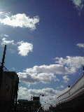 タロウちゃん-10-10-27_003~001.jpg