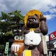 益子 秋の陶器市【初…