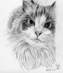 『わが愛は猫である』-鉛筆