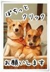 ぶーちゃんのお洒落日記-バナー